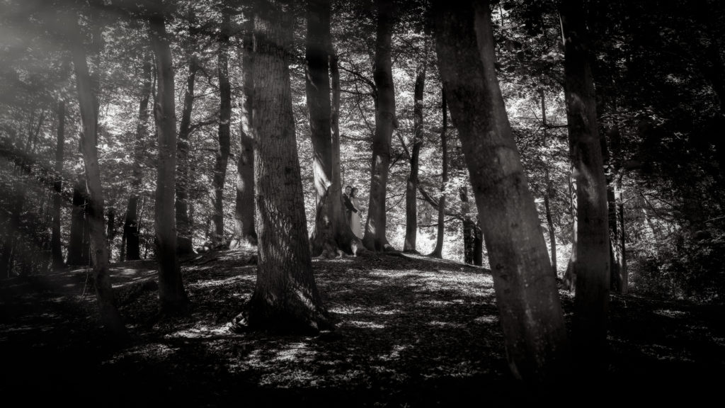Bruidspaar in het bos, prachtig licht