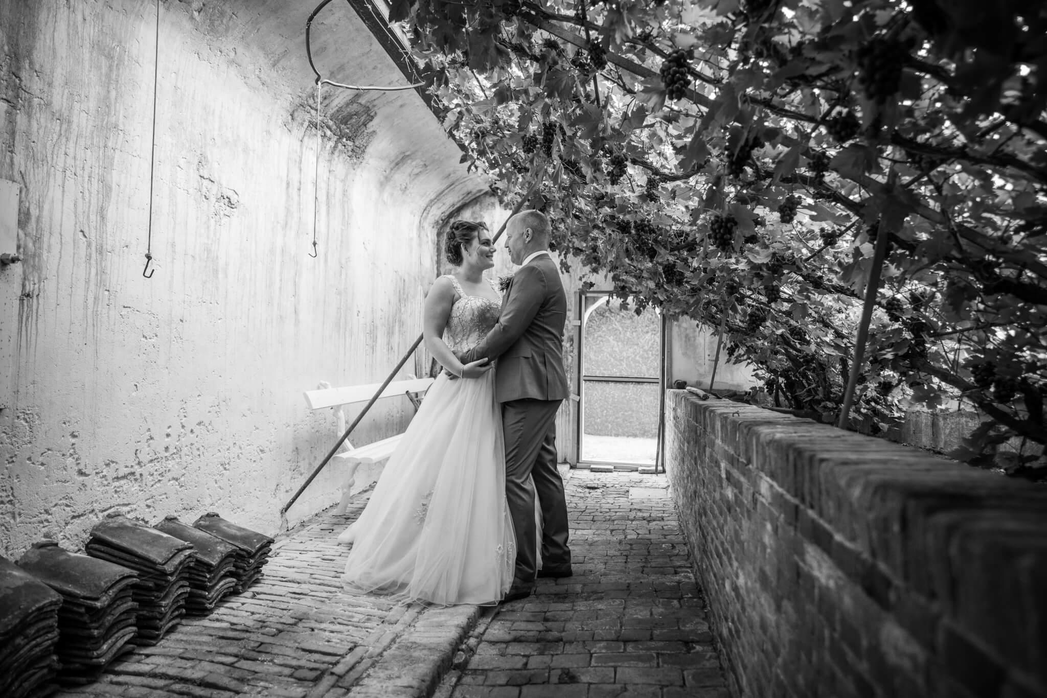 Bruidspaar in kas